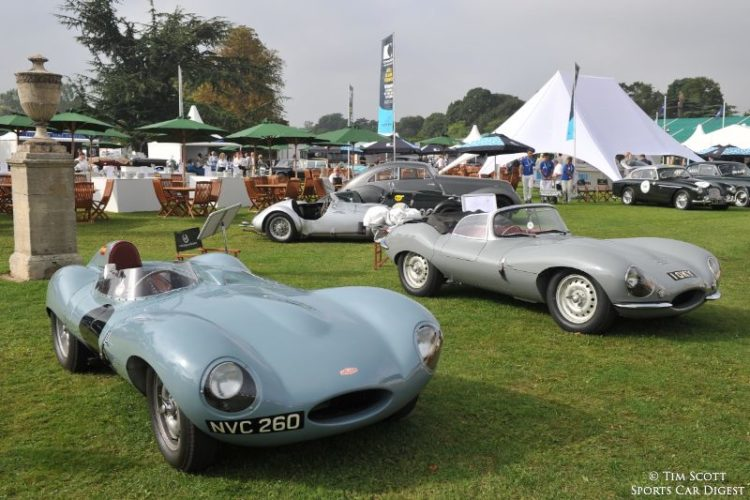 Jaguar D-Type and Jaguar XKSS