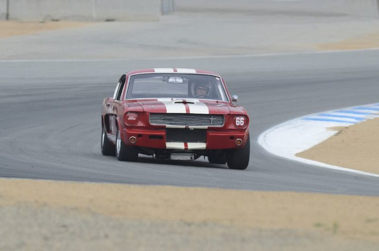 Mark Cane's Shelby GT350.