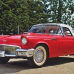 Ford Thunderbird- Little Bird 1955–1957