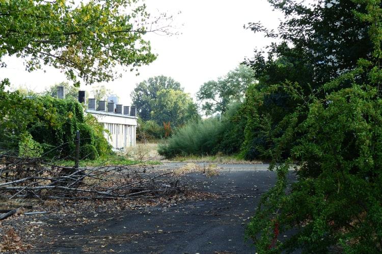 gardens lost