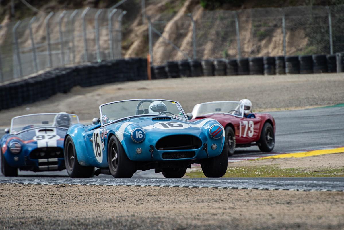 In car #16 is Lynn Park - 1964 Cobra followed by car #97 Steve Park - 1962 Cobra and in car #173 is Robert Beede - 1963 Cobra